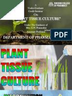 Plant Tissue Culture (Pharmacognosy)