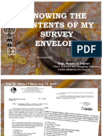 Survey Envelope.pdf · version 1