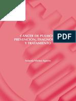 07-CANCER-DE-PULMON-PREVENCION-DIAGNOSTICO-Y-TRATAMIENTO-vilches_1.pdf