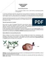 8th Guide - plant reproduction asexual