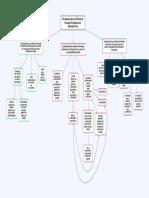 Mapa Conceitual Percepções sobre as Políticas de Formação Profissional em Educação Física