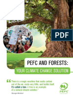 PEFC & Forests