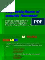 vegetatia_fauna_si solurile romaniei