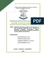 INFORM_GALLINAS_LULU_PONTE