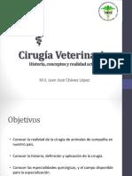 1 - Realidad, divisiones y ramas de la cirugía