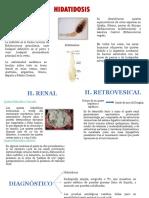 parasitosis renal