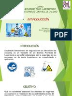 1. Introducción Curso seguridad.pdf