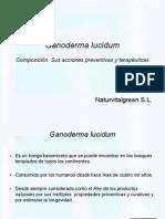 Ganoderma lucidum spaniola