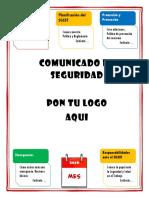 327244003-Folleto-Sst.pdf