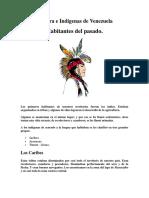 Cultura e Indígenas de Venezuela.docx