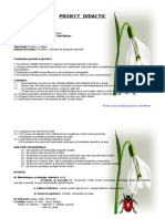 2_proiect_didactic_geografie.doc