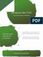 Bosques del Chili (2)