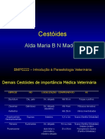 Cestoides_2011