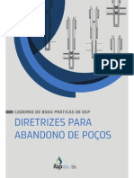 1or4_IBP_CBP_EP_Caderno-Boas-Praticas_Diretrizes_Poco