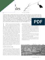 Ferti_2002_7_23_26.pdf