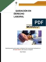 liquidacion laboral.pdf