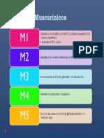 RECEPTORES MIUSCARÍNICOS.pptx