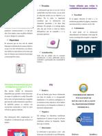 triptico grupo 06.pdf