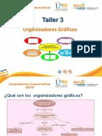 Taller_3_Organizadores_Graficos