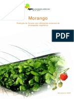 4 Morango.pdf