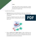 DIAGNOSTICO CA CUELLO UTERINO, GINECOPRACTICA