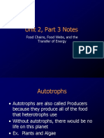 1food webs and food chains