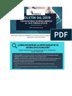 BOLETIN INDESGUA 04-2019 (1)