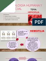 HEMOFILIA EXPOGRUPO 3