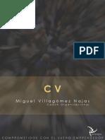 CVmVnSinergiaCEO2019