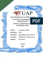 TRABAJO DE TECNOLOGIAS DE LA COMUNICACION Y LA INFORMACION-T.I.C. (ALGEBRA LINEAL).docx