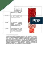 Resultados, Discusión de resultados- Practica nº 10 y 11.docx