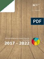 PLAN-NACIONAL-DE-ACCION-CPS-2017-2020
