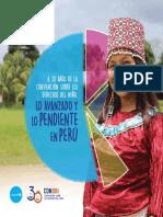 Unicef A 30 CDN lo avanzado y lo pendiente. Balance Peru.pdf