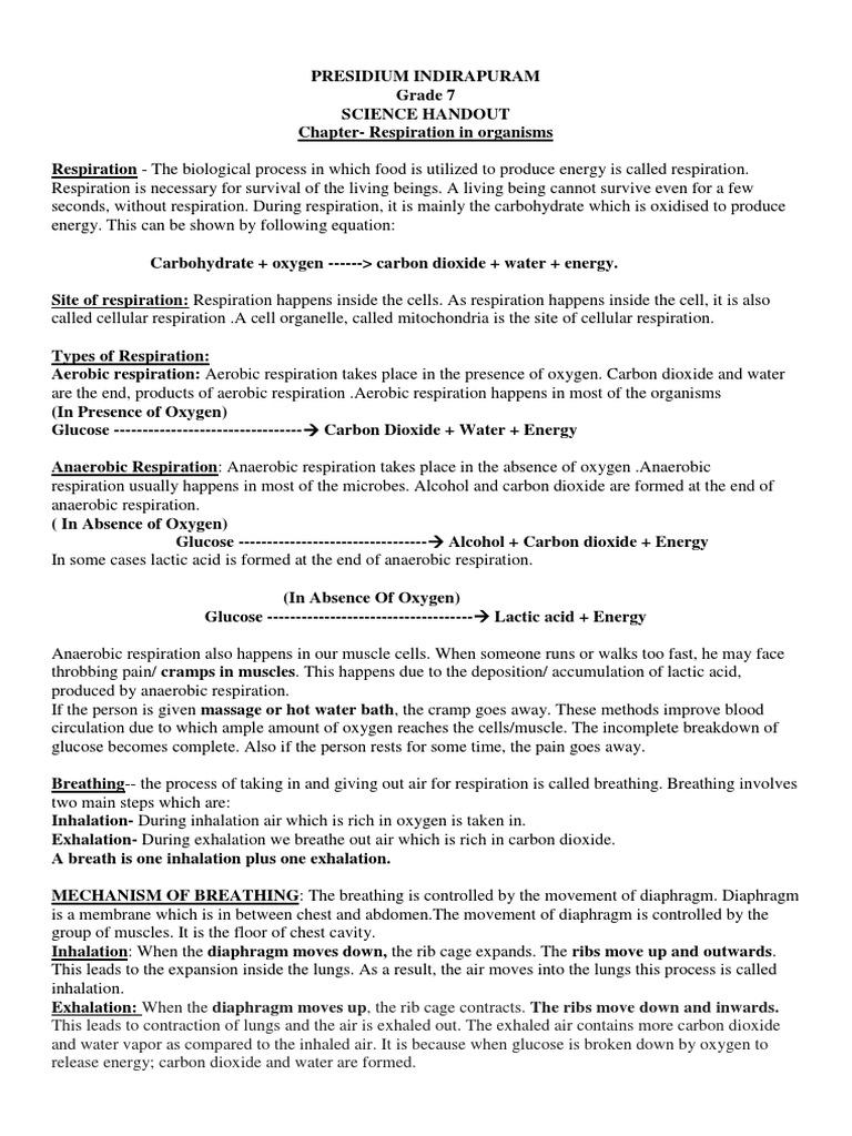 Notebook Work Respiration In Organisms Respiratory System Breathing