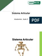 Aula 3 - Sistema Articular