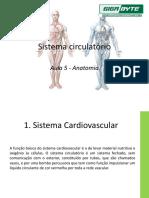 Aula 5 - Sistema cardiovascular(g)
