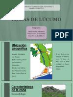 LOMAS DE LÚCUMO - GESTIÓN DE RIESGO