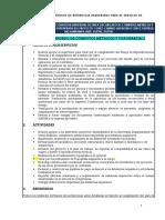 CONSULTORIA_INDIVIDUAL_RM_751-REFULTIMO_ENCARGADO DE COMPUTOS METRICOS_14_10_2019