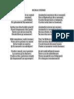 HORA UNIRII_versuri.doc