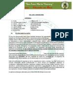 MODELO DE SILABUS