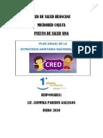 PLAN ANUAL DE CRECIMIENTO Y DESARROLLO DEL NIÑO.docx