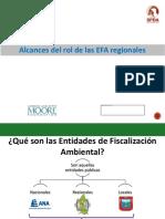 04-Alcances-del-rol-de-las-EFA-regionales