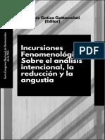 Incursiones-fenomenológicas-sobre-el-análisis-intencional-la-reducción-y-la-angustia