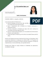 CVF-Griselda Isabel Calderón Ubillus 01.10.19 (S)