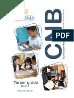 3o grado CNB Nivel de Educación Primaria