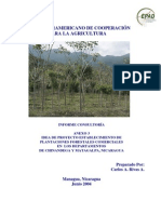 Idea Proyecto Plantaciones Forest Ales Comerciales_IICA 2004