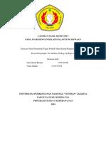 LAPORAN HASIL HOMEVISIT Kep.Anak.docx
