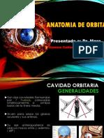 ANATOMIA DE ORBITA