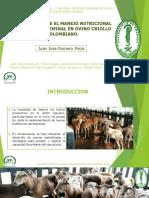 Copia de Presentacion Juan Jose Romero Meza Ovinos Congreso de Tunja