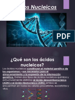 Biologia Acidos Nucleicos.pptx